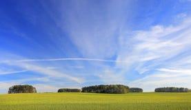 лето ландшафта солнечное Стоковые Фотографии RF