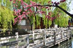 лето дворца сада Пекин Стоковые Изображения RF