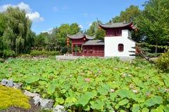 лето дворца сада Пекин Стоковая Фотография RF