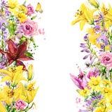 лето неба лилий сада цветков предпосылки голубое яркое изображение иллюстрации летания клюва декоративное своя бумажная акварель  Стоковая Фотография RF