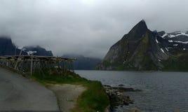 лето Норвегии Стоковое Изображение RF