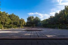лето парка Стоковые Изображения