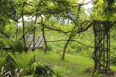 лето сада Стоковая Фотография