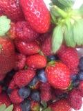 лето семени содержимого pomegranate плодоовощ красное Стоковое Изображение