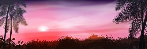 лето флористической ночи конструкции предпосылки безшовное ваше Пальмы на предпосылке  Стоковые Изображения