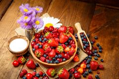 лето ягод свежее Стоковое Изображение