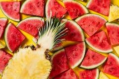 лето seashells песка рамки принципиальной схемы предпосылки схематическо Вкусный аппетитный кусок ананаса стоковые изображения