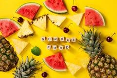 лето seashells песка рамки принципиальной схемы предпосылки схематическо Вкусные аппетитные куски ананаса стоковые изображения