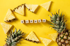 лето seashells песка рамки принципиальной схемы предпосылки схематическо Вкусные аппетитные куски ананаса стоковое фото rf
