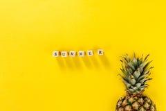 лето seashells песка рамки принципиальной схемы предпосылки схематическо Вкусная аппетитная половина ананаса o стоковая фотография