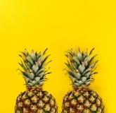 лето seashells песка рамки принципиальной схемы предпосылки схематическо Вкусная аппетитная половина ананаса o стоковое изображение rf