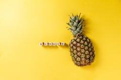 лето seashells песка рамки принципиальной схемы предпосылки схематическо Вкусная аппетитная половина ананаса o стоковые фото