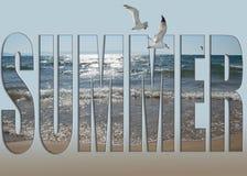 лето seashells песка рамки принципиальной схемы предпосылки стоковая фотография rf