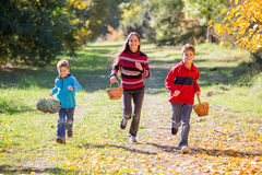 3 дет бежать на лесе осени с корзинами Стоковые Изображения