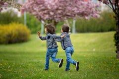 2 дет, братья, воюя в парке Стоковое Изображение RF