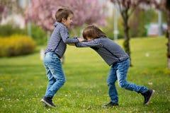 2 дет, братья, воюя в парке Стоковое Изображение