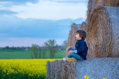 2 дет, братья мальчика в рапсе семени масличной культуры field, сидящ на a Стоковое Фото