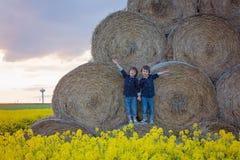 2 дет, братья мальчика в рапсе семени масличной культуры field, сидящ на a Стоковые Изображения