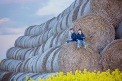 2 дет, братья мальчика в рапсе семени масличной культуры field, сидящ на a Стоковая Фотография RF