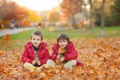2 дет, братья мальчика, играя с листьями в парке осени Стоковая Фотография