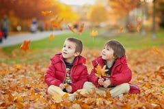 2 дет, братья мальчика, играя с листьями в парке осени Стоковые Изображения RF