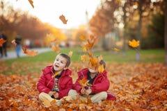 2 дет, братья мальчика, играя с листьями в парке осени Стоковое Изображение RF