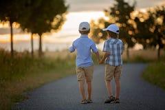 2 дет, братья мальчика, имеющ потеху outdoors с автомобилями игрушки Стоковые Изображения RF