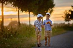 2 дет, братья мальчика, имеющ потеху outdoors с автомобилями игрушки Стоковая Фотография RF