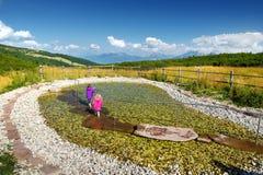 2 дет ввергая их ноги в и вытягивая их из воды к благополучию увеличения и усиливают иммунную систему Стоковые Фотографии RF
