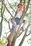 2 дет взбираясь дерево Стоковые Изображения RF