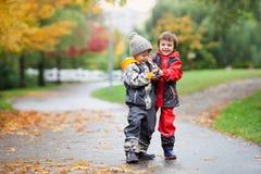 2 дет, воюя над игрушкой в парке на дождливый день Стоковые Изображения RF