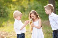 3 дет играя на луге Стоковая Фотография