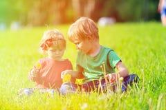 2 дет играя с одуванчиками на зеленой траве Стоковое Изображение RF