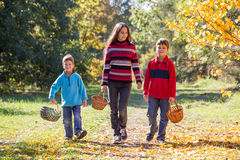 3 дет идя на лес осени с корзинами Стоковые Фотографии RF