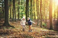 2 дет идя через зеленый лес Стоковые Фото