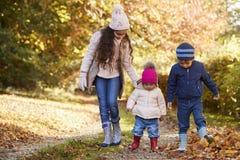 3 дет наслаждаясь сельской местностью осени идут совместно Стоковое Изображение