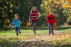 3 дет на парке осени с корзинами Стоковая Фотография RF