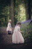 2 дет на пути в древесине вполне bluebells Стоковые Фотографии RF