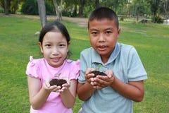 2 дет при руки держа деревце в поверхности почвы Стоковое Изображение RF