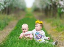 2 дет сидят в траве в саде яблока Стоковые Изображения RF