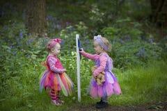 2 дет смотря указатель в лесе Стоковые Фото