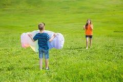 2 дет с красочным змеем на зеленой лужайке Стоковая Фотография RF