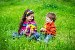 2 дет с одуванчиками на луге Стоковые Изображения