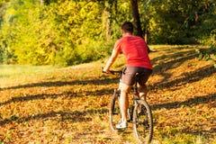 Ехать велосипед стоковые изображения rf