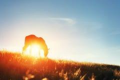 Ехать в горах на заходе солнца Стоковые Изображения