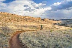 Ехать тучный велосипед в предгорьях Колорадо Стоковые Изображения RF