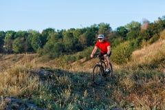 Ехать человека спортсмена спорта горного велосипеда внешний Стоковое Фото