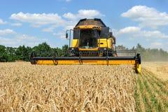 деятельность пшеницы жатки поля зернокомбайна Стоковое Изображение RF