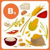 Еда вектора с витамином B3 бесплатная иллюстрация