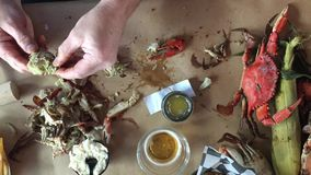 Еда ведра свежих крабов сток-видео